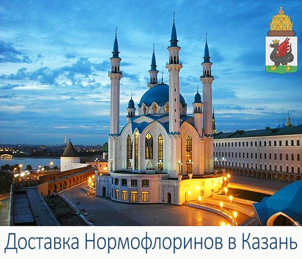 купить нормофлорины в Казани