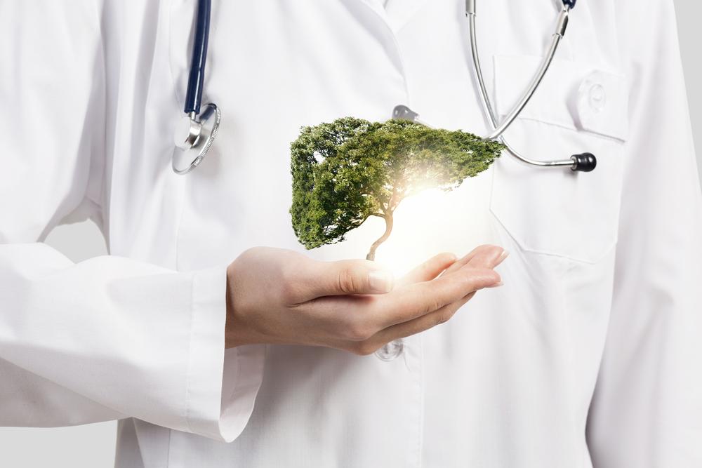 Нормофлорины при заболеваниях печени