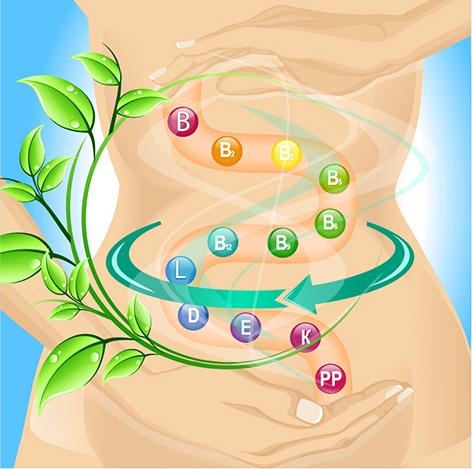 выбор пробиотиков