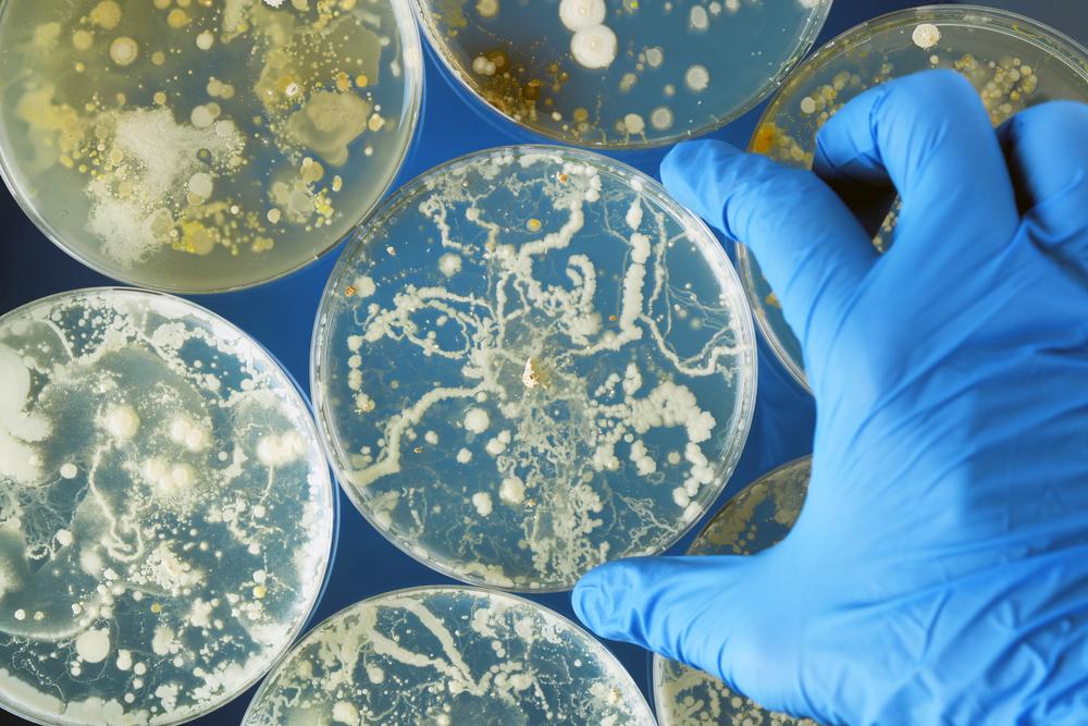 Чем опасен дисбактериоз