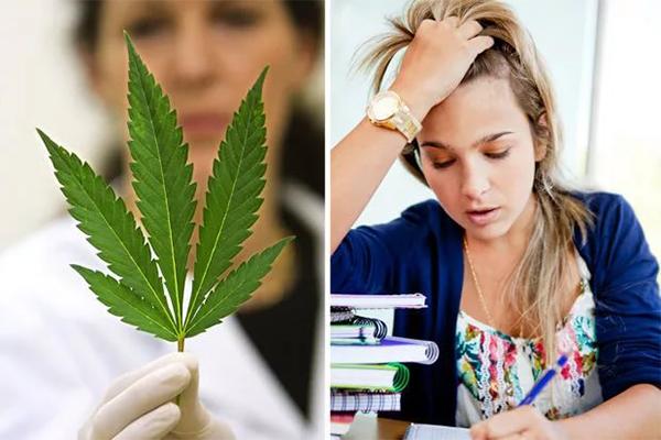 Марихуана и мужское здоровье как влияет на здоровье курение марихуаны